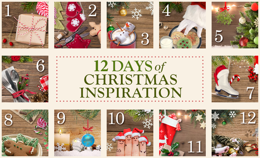 Blue Mountain 12 Days of Christmas Inspiration Giveaway Ends 12/24